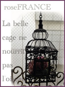 cage-3